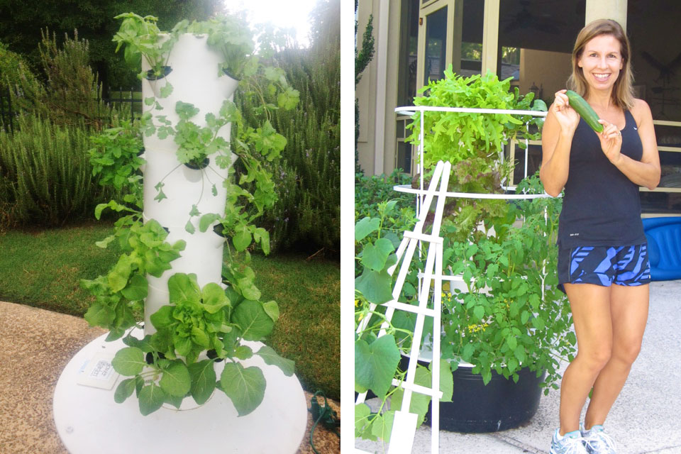 Tower Garden Newly Planted 2012